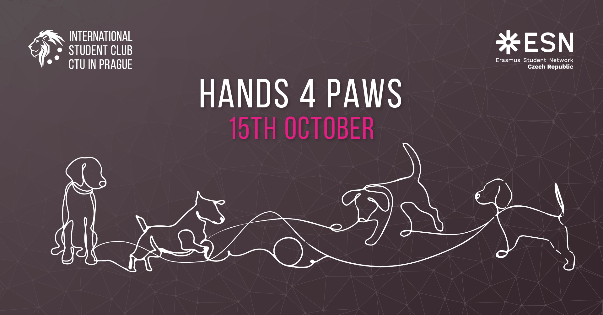 Hand4Paws