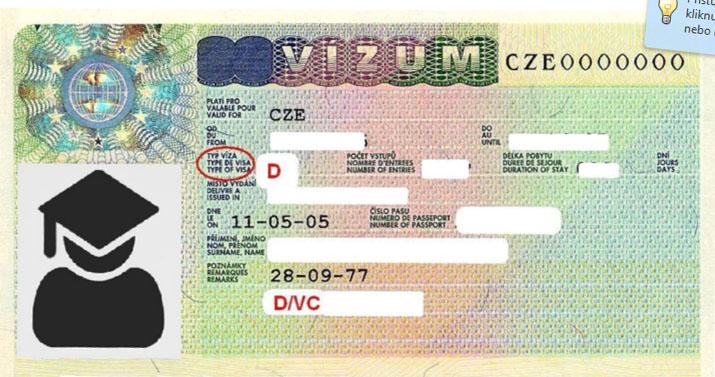 Long-term visa – D/VC