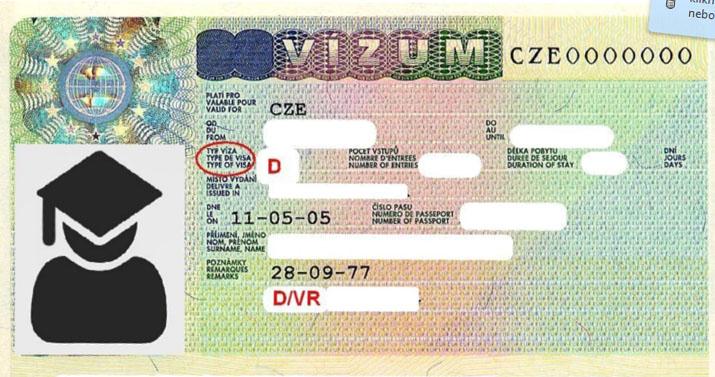 Entering visa – D/VR